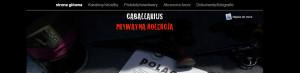 http://www.kolekcjonerska.com.pl/